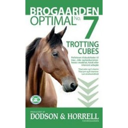 Optimal Trotting cubes, 15 kg